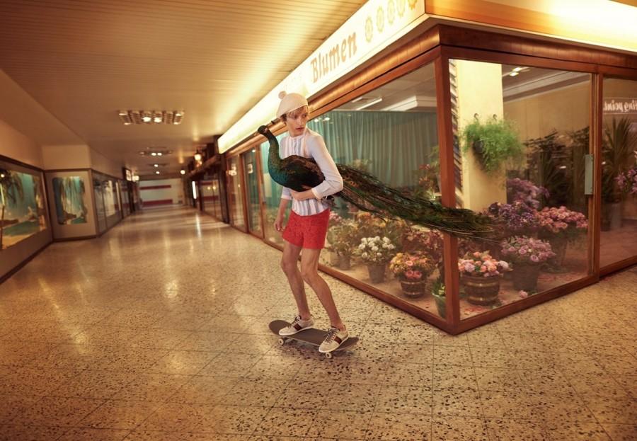 gucci peacock skateboarding fashion