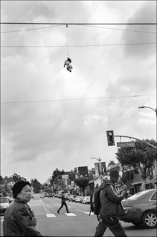 rich odam stuff animal hanging from telephone wire ghetto la