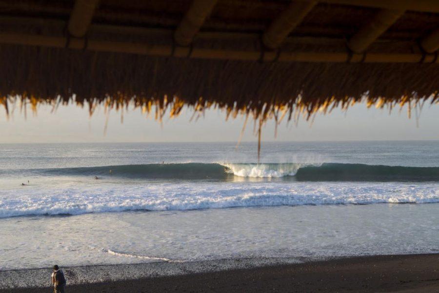 bali-surf-drugs-acai-bowl-thief-incident